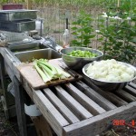 Using the outdoor sink to prepare the ingredients for chicken broth.